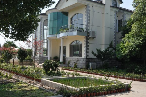 别墅庭院菜园设计_设计展示