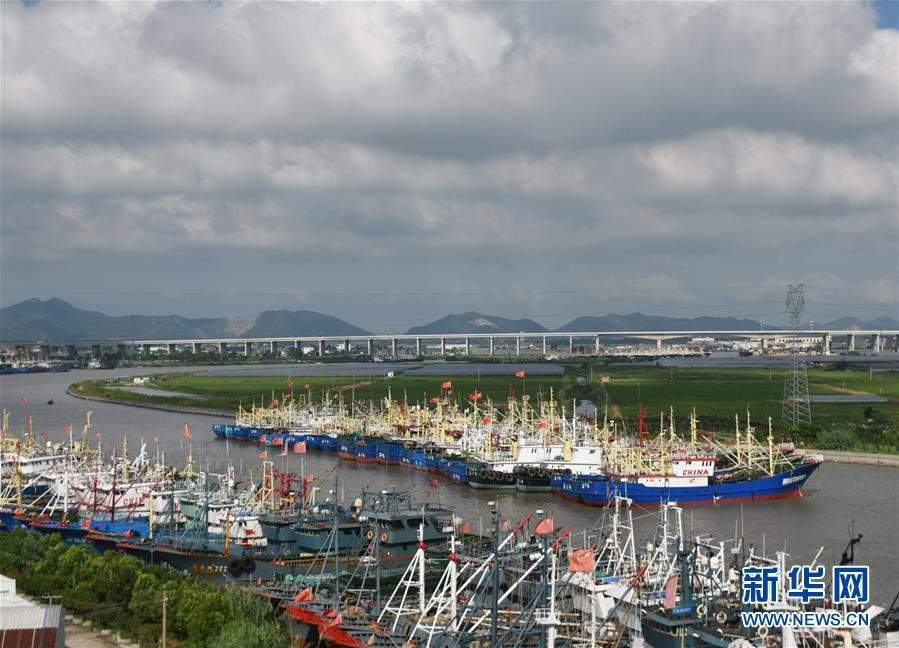 #(社会)(4)浙江台州渔船回港避风