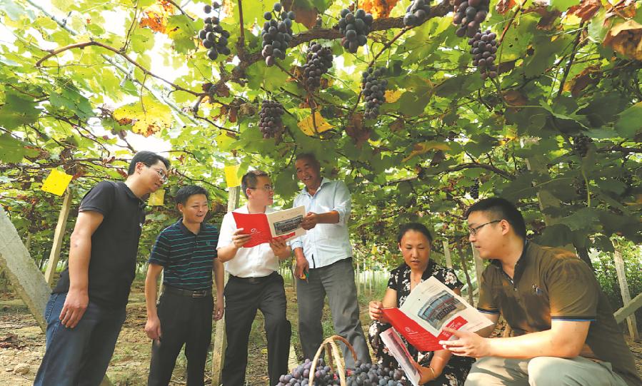 安徽六安:小额贷款促脱贫