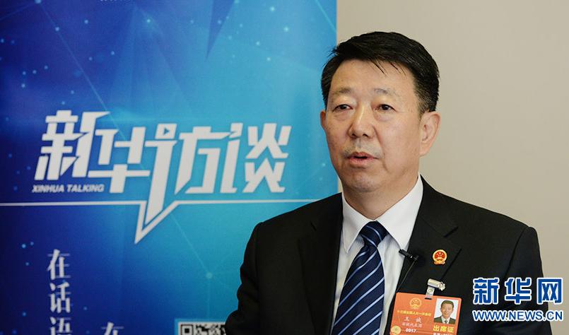 """王诚:构筑""""三驾马车"""" 激活农村发展活力"""