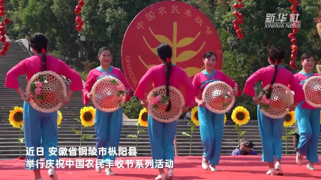 安徽銅陵:歡喜慶豐收