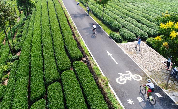 松阳:自行车山地越野开赛