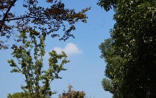 南京1-10月空气质量全省最好 优良天数达73%