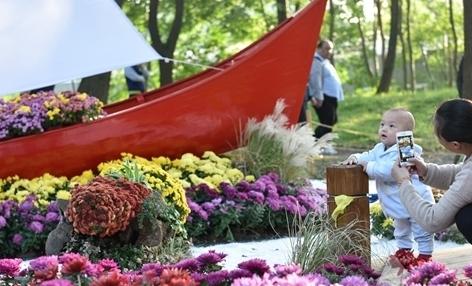 上海菊花展迎来最佳赏花期 已吸引近15万游客