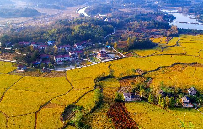 展开美丽中国的金秋画卷