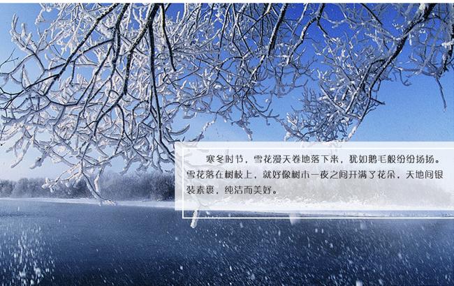 今日冬至丨冬至大如年 三九藏冬趣