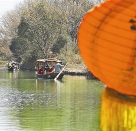 今年春节可以这样玩:西溪坐摇橹船 赏梅吃火锅