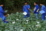 浙江出台政策激励农技人员创业