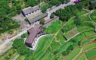 上虞岭南乡打造全域大花园 把盆景变风景