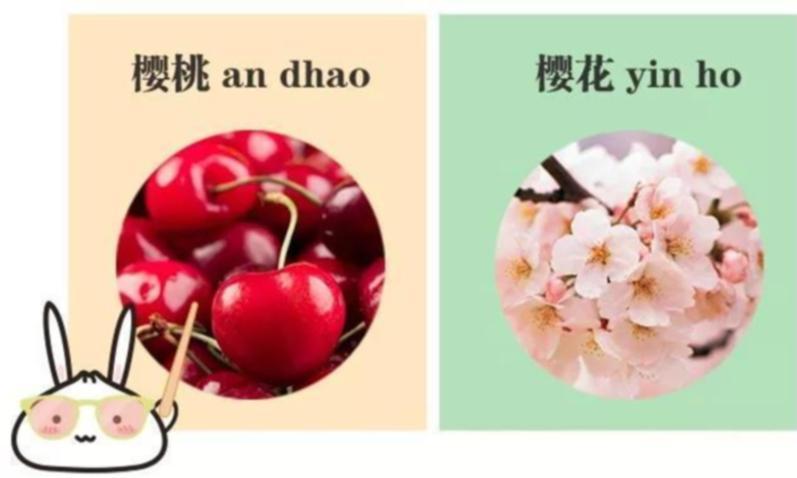 """上海话里这么多""""多音字"""",你都能读对吗?"""