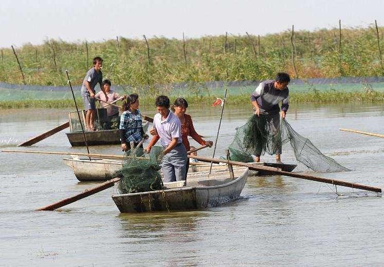 江苏泗洪:守住生态红线,放飞绿色梦想