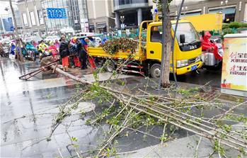"""台风""""云雀""""在上海金山沿海登陆"""