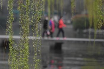 浙江杭州:春回西湖